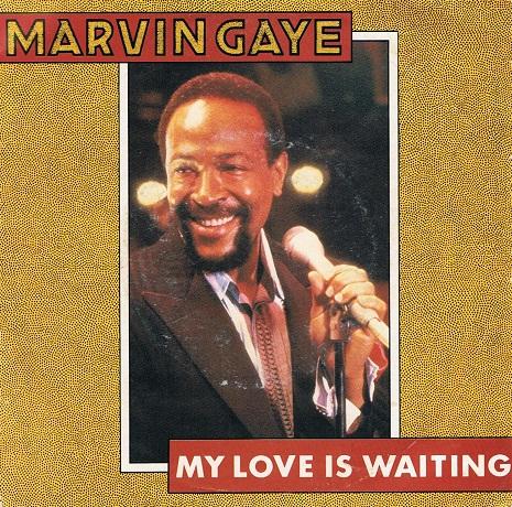 Marvin gaye midnight love vinyl