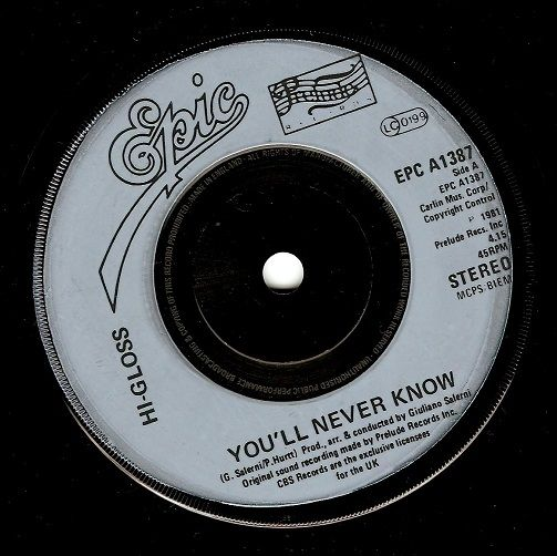 HI-GLOSS You'll Never Know Vinyl Record 7 Inch Epic 1981
