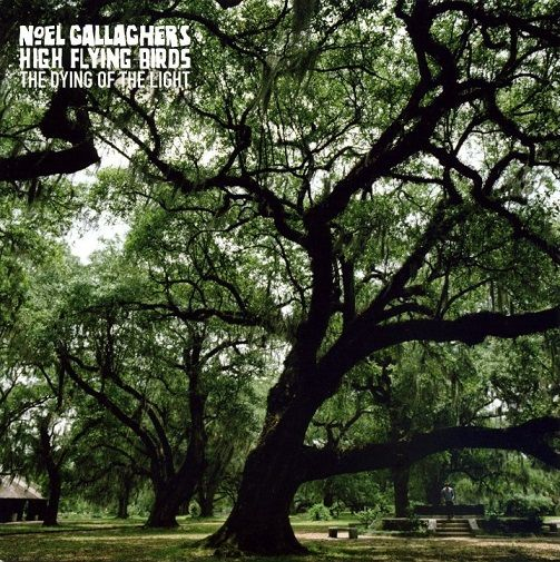 NOEL GALLAGHER'S HIGH FLYING BIRDS The Dying Of The Light Record 7 Inch Sour Mash 2015 Green Vinyl
